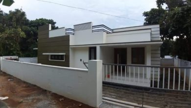 Photo of 700 Square Feet 2 Bedroom Single Floor Modern Flat Roof House and Interior