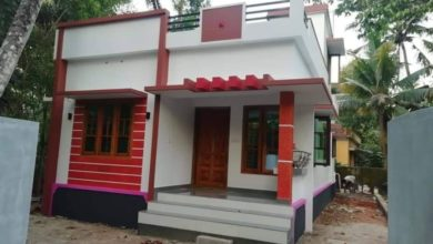 Photo of 700 Square Feet 2 Bedroom Single Floor Modern House and Plan
