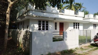 Photo of 880 Square Feet 3 Bedroom Single Floor Low Budget House and Interior