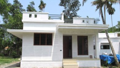 Photo of 882 Square Feet 3 Bedroom Single Floor Modern and Beautiful House and Plan