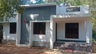 Photo of 988 Square Feet 3 Bedroom Single Floor Modern Super House and Plan