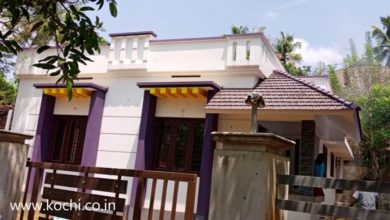 Photo of 900 Sq Ft 2BHK Single Floor Low Budget House at 4 Cent Plot