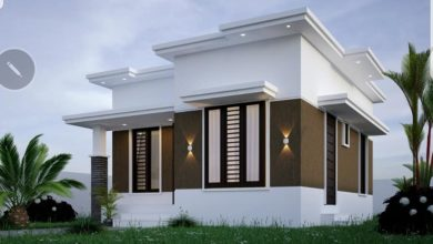 Photo of 696 Sq Ft 2BHK Modern Single-Storey Beautiful House and Plan