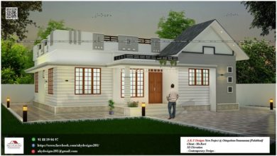 Photo of 1000 Sq Ft 3BHK Single-Storey Beautiful House and Free Plan