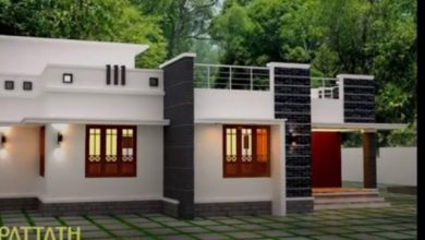 Photo of 3 Bedroom Contemporary Style Single-Storey House Design and Plan