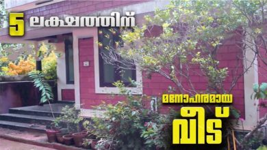 Photo of 500 Sq Ft 2BHK Single Floor Low Budget House, Cost 5 Lacks