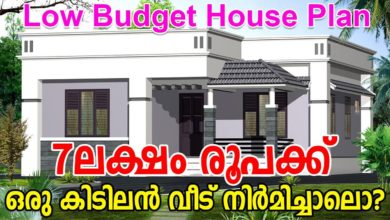 Photo of 515 Sq Ft 2BHK Modern Single Floor House and Free Plan, 7 Lacks