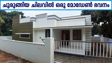 Photo of 700 Sq Ft 2BHK Modern Single Floor House at 5 Cent, Free Plan