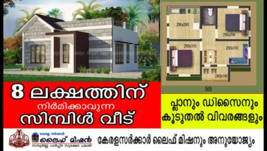 Photo of 565 Sq Ft 2BHK Modern and Beautiful House and Free Plan, 8 Lacks