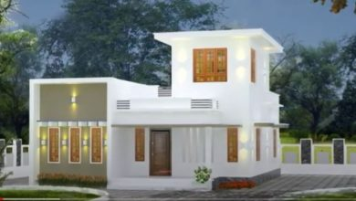Photo of 700 Sq Ft 2BHK Single-Storey Modern Flat Roof Type House and Free Plan