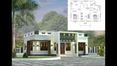 Photo of 800 Sq Ft 2BHK Modern Single-Storey House and Free Plan