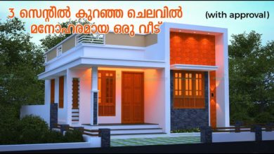 Photo of Below 500 Sq Ft 2BHK Modern Single Floor House and Free Plan