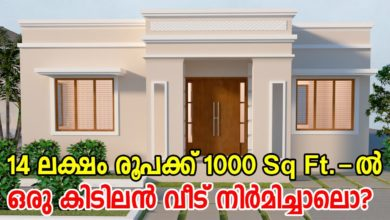 Photo of 1000 Sq Ft 3BHK Flat Roof Modern Single-Storey House and Free Plan, 14 Lacks