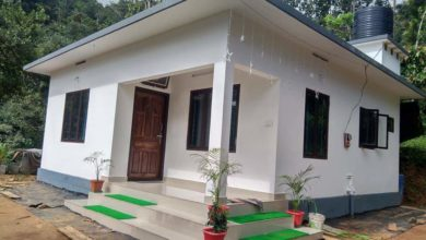 Photo of 520 Sq Ft 2BHK Modern Low Budget Single Floor House and Free Plan
