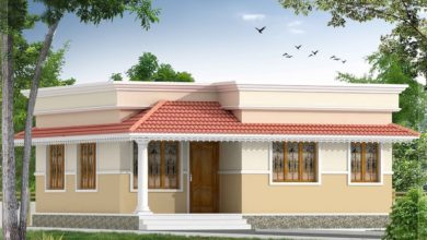 Photo of 700 Sq Ft 2BHK Traditional Style Single Floor House and Free Plan