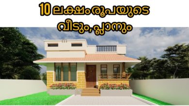 Photo of 650 Sq Ft 3BHK PMAY House at 3 Cent Plot, Free Plan, 10 Lacks