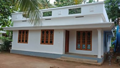 Photo of 725 Sq Ft 2BHK Modern Single Floor House and Free Plan