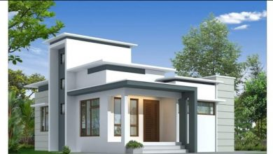 Photo of 700 Sq Ft 2BHK Modern Single Floor House and Free Plan, 10 Lacks